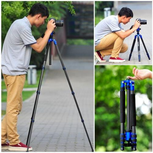 Professional Carbon Tripod Z818C Travel for DSLR Camera